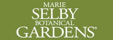 The Marie Selby Botanical Gardens